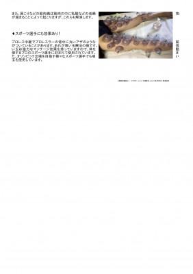 吸い玉療法について(張莉)-2