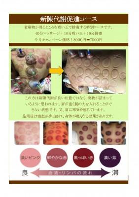 新陳代謝促進コース_page-0001